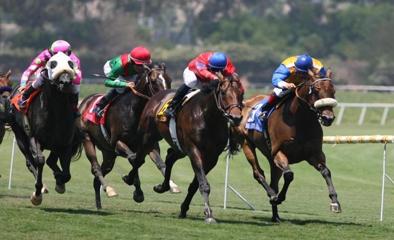 วิธีแทงม้าให้ชนะ ที่จะต้องหาข้อมูลเกี่ยวกับม้าให้ดี