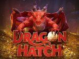 บอกเคล็ดลับยิงไข่ใน เกม Dragon Hatch ชิงเงินโบนัสแบบเต็มๆ