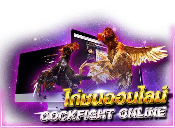 COCKFIGHT พนันไก่ชนออนไลน์ เกมพนันกีฬาที่มีความสนุก